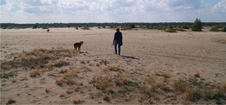 Na pustynię z psem