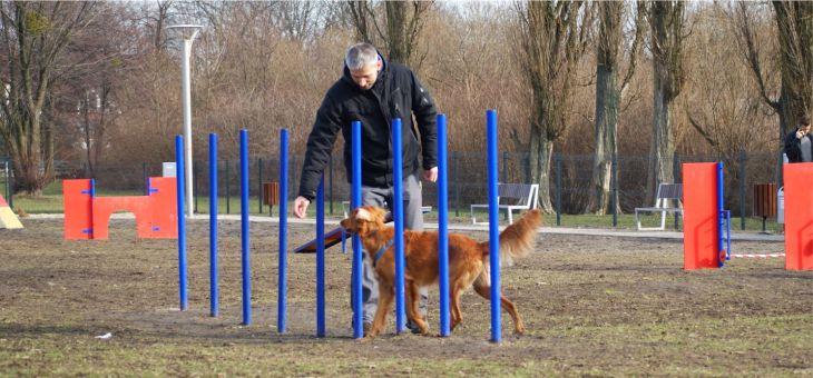 Psi Park w Tychach