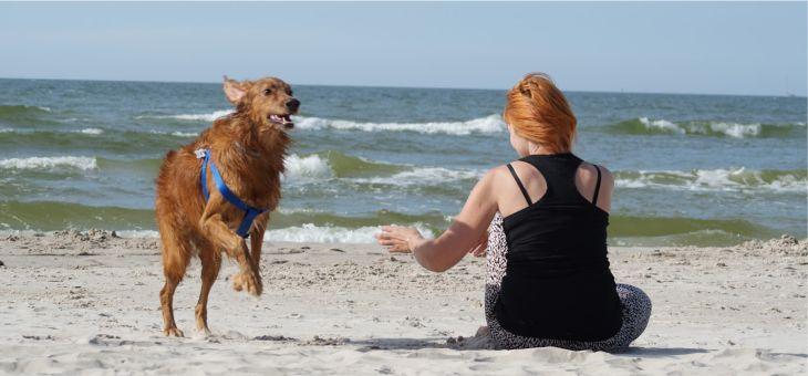 Plaża, dzika plaża…