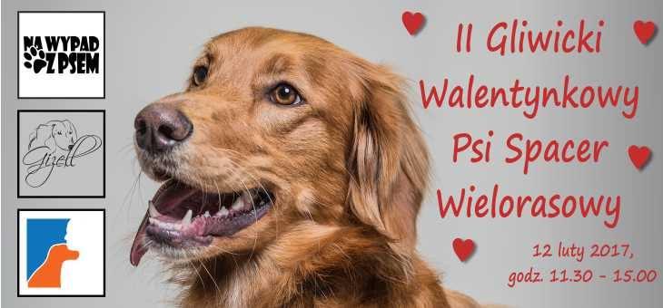 II Gliwicki Walentynkowy Psi Spacer Wielorasowy