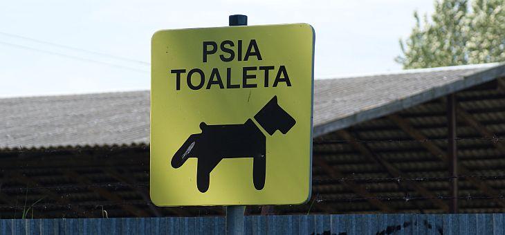 Psie toalety w Pucku