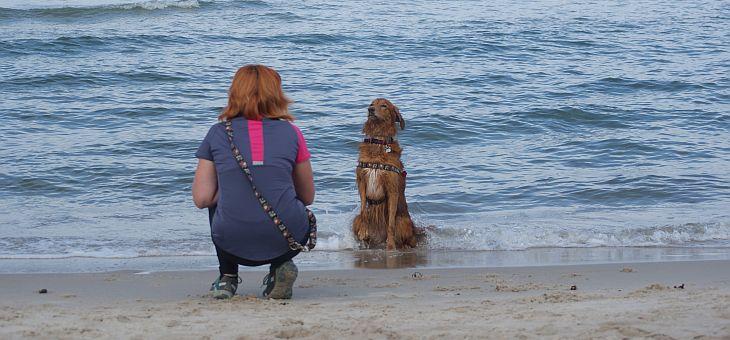 Plaża dla psów w Kuźnicy