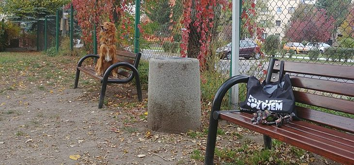 Wybieg dla psów w Katowice – Brynów