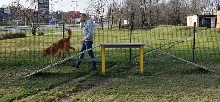 Wybieg dla psów w Żorach – AŻOREK