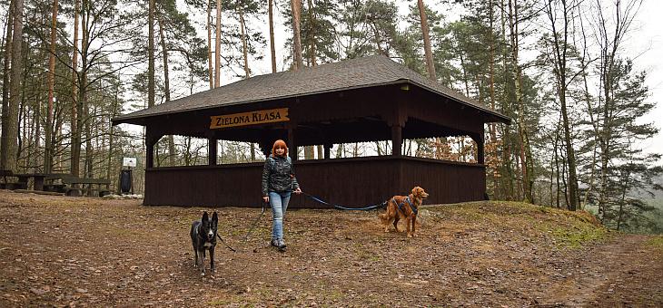 Park Krajobrazowy Cysterskie Kompozycje Krajobrazowe Rud Wielkich – Rudy Raciborskie