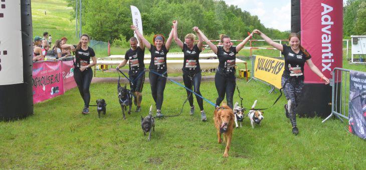Hard Dog Race na Górze Kamieńsk