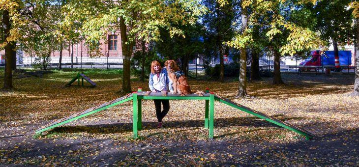 Wybieg dla psów w Bielsku – Białej