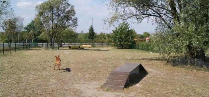 Psi wybieg