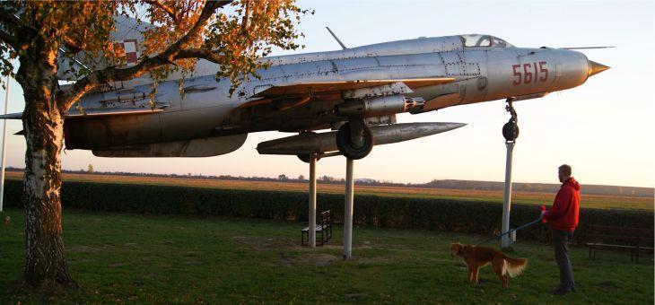 Po lotnisku z psem