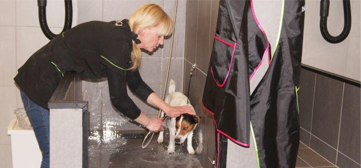 Z wizytą w salonie pielęgnacji zwierząt