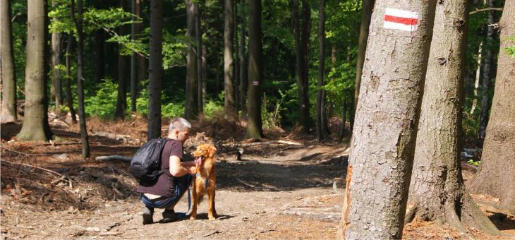 Góry Opawskie z psem