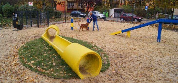 Dog Park w Katowicach