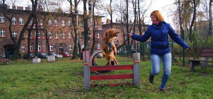Wybieg dla psów Katowice – Nikiszowiec