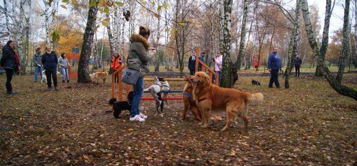 Wybieg dla psów w Rybniku