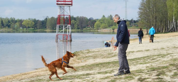 Jezioro Pławniowice na wypad z psem