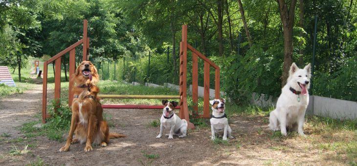 Wybieg dla psów w Rybniku, Obwiednia Południowa