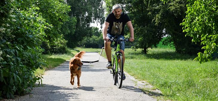 Zestaw rowerowy Trixie
