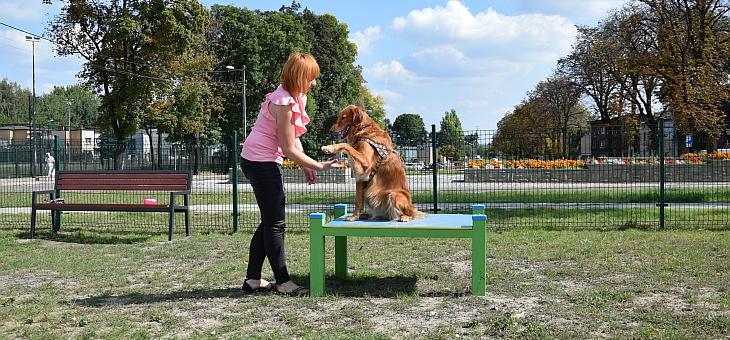 Wybieg dla psów w Piekarach Śląskich