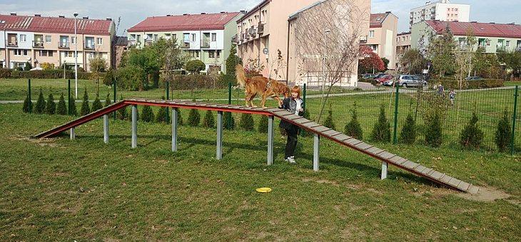 Wybieg dla psów w Mysłowicach