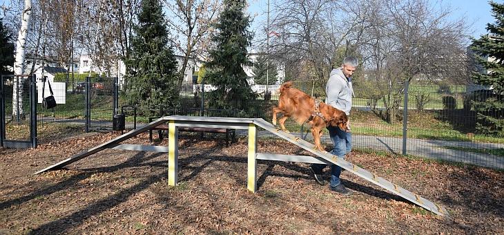 Wybieg dla psów w Żorach – PSIKUS