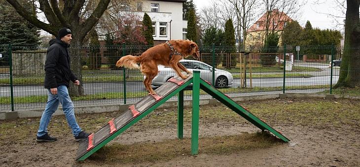Wybieg dla psów w Raciborzu