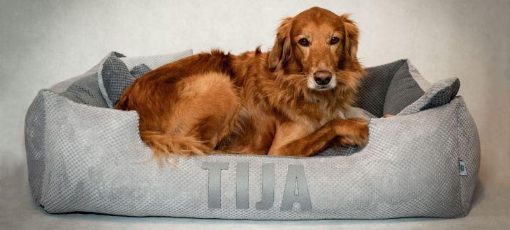Beds4Dogs – legowiska dla psów z imieniem