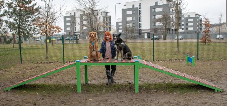 Wybieg dla psów w Knurowie