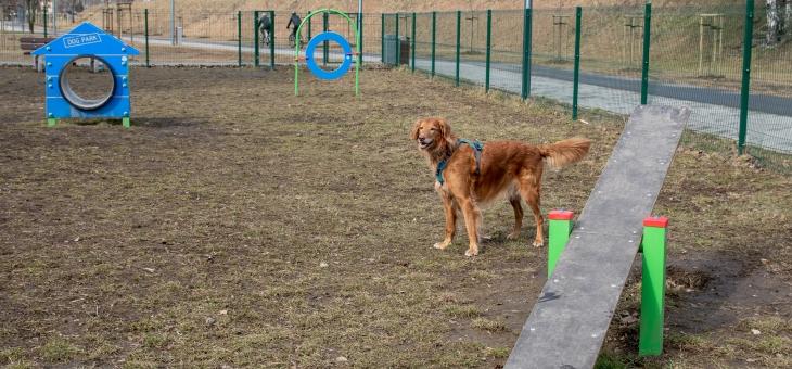 Wybieg dla psów w Piekarach Śląskich – Kamieniu