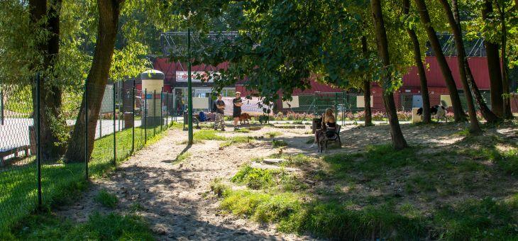 Wybieg dla psów w Wodzisławiu Śląskim (Trzy Wzgórza)